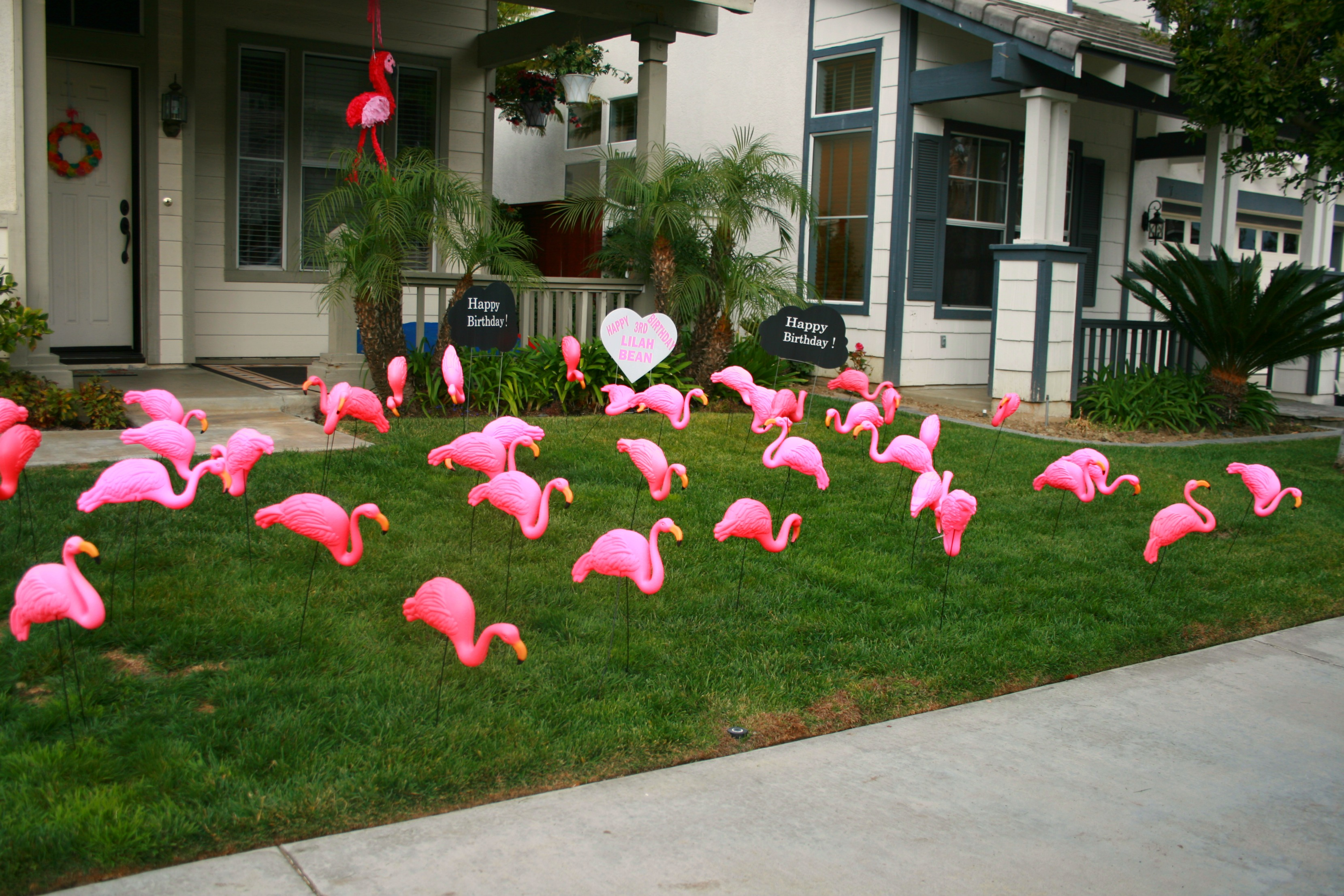 Fabulous Flamingo Party - Family Review Guide