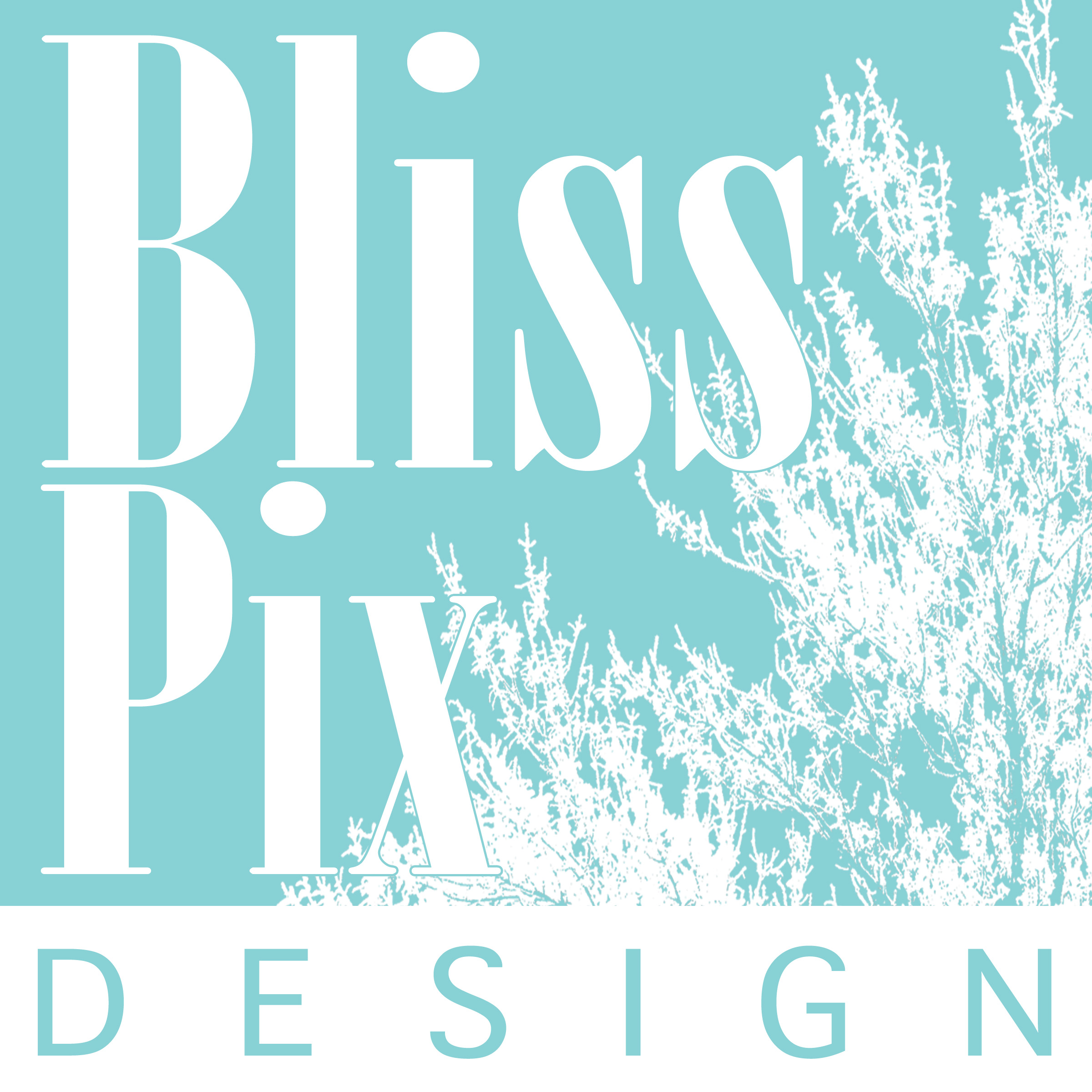 blisspixdesign.com